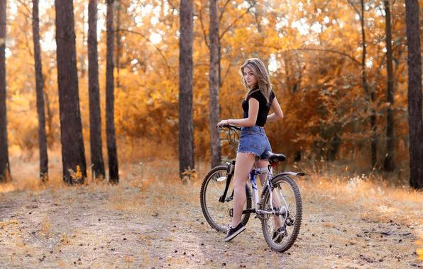 Картинка осень, лес, девушка, деревья, природа, велосипед, парк, настроение, отдых, шорты, кеды, фигура, футболка, прическа, шатенка, …
