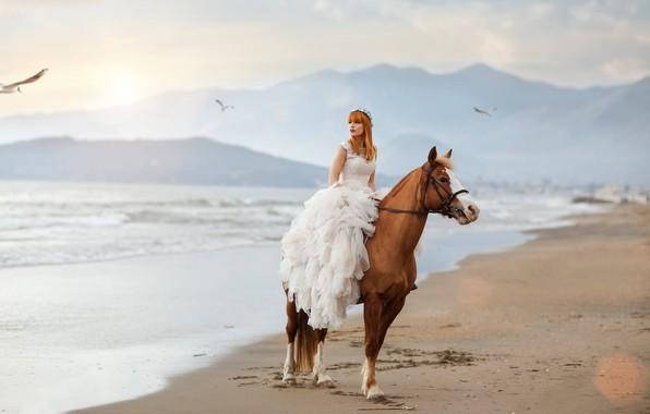 Картинка море, девушка, настроение, конь, лошадь, чайки, платье, Alessandro Di Cicco, Roberta Poccafassi