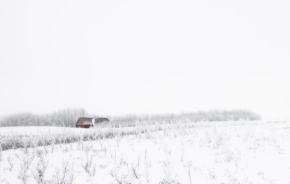 Картинка зима, поле, снег, дом