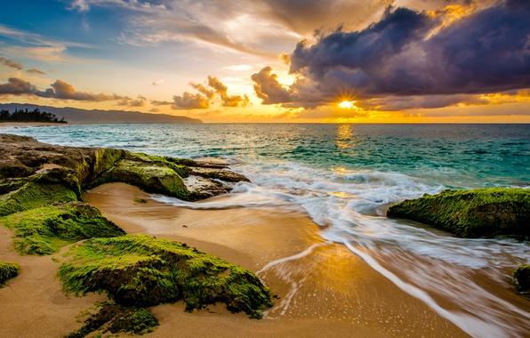 Картинка песок, море, небо, солнце, облака, водоросли, тропики, камни, рассвет, побережье, горизонт, Гавайи