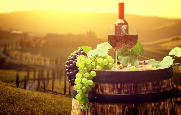 Картинка листья, солнце, пейзаж, вино, бутылка, бокалы, виноград, Италия, пробки, бочка, боке, Тоскана