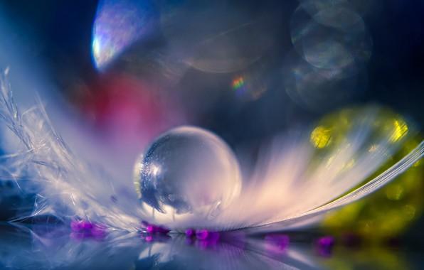 Картинка прозрачный, перо, шарик
