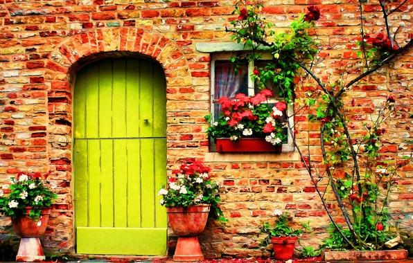 Окна в цветах