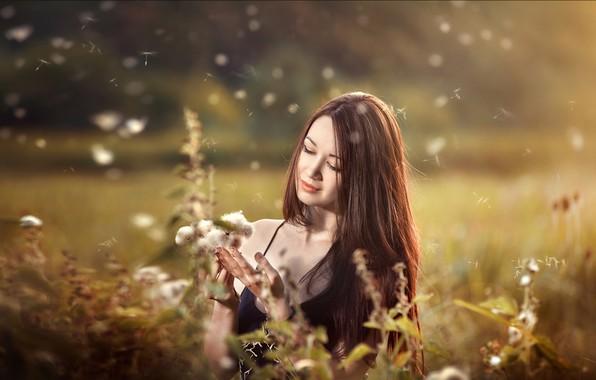 Картинка девушка, лицо, настроение, волосы, луг, пушинки, Вадим Мельник