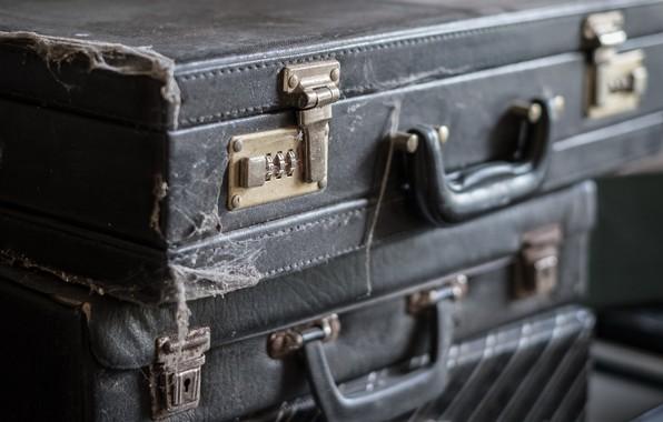 Картинка паутина, пыль, чемоданы