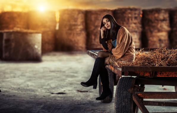 Картинка девушка, поза, сапоги, сено, повозка, ферма, Alessandro Di Cicco, Margherita Aresti
