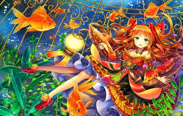 Фото обои рыбы, платье, девочка