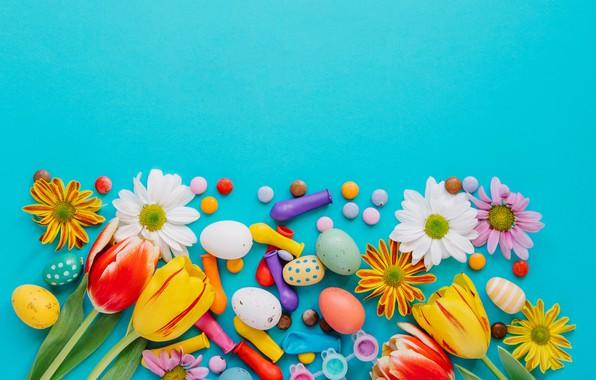 Картинка цветы, весна, colorful, Пасха, тюльпаны, хризантемы, flowers, tulips, spring, Easter, eggs, decoration, Happy, яйца крашеные