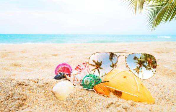 Картинка песок, море, пляж, лето, пальмы, отдых, очки, ракушки, summer, beach, каникулы, sea, sand, paradise, vacation, ...