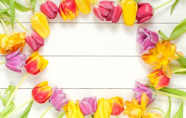 Картинка цветы, букет, весна, рамка, colorful, тюльпаны, fresh, wood, flowers, beautiful, tulips, spring, bright
