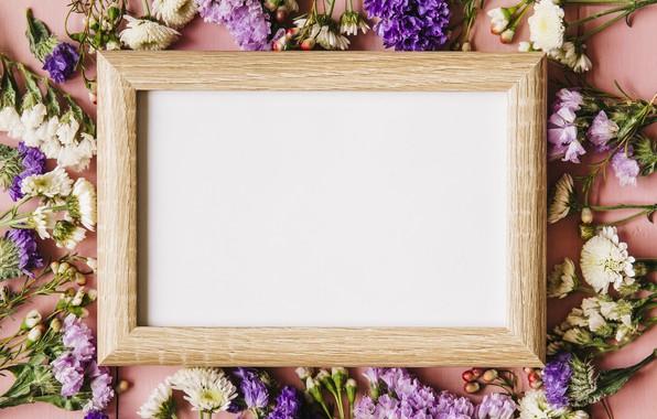 Картинка цветы, фон, весна, рамка, доска, pink, flowers, background, spring, frame