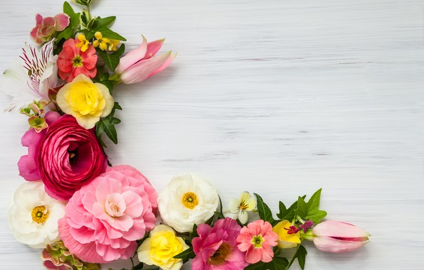 Картинка цветы, pink, flowers, beautiful, композиция, frame, floral