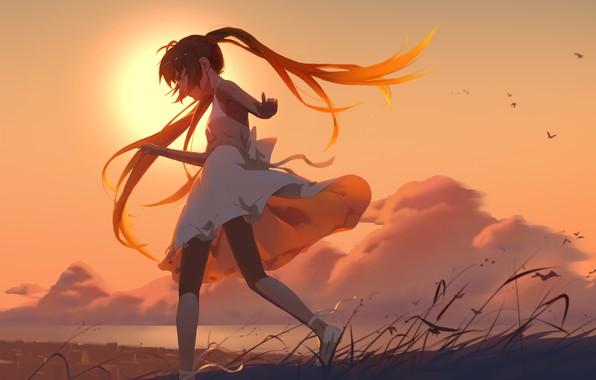 Картинка небо, девушка, облака, закат, птицы, аниме, арт, vocaloid, hatsunу miku