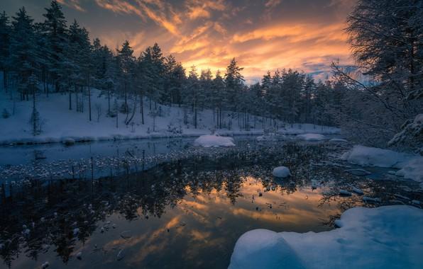 Картинка зима, лес, снег, деревья, закат, река, Норвегия, Norway, Рингерике, Ringerike