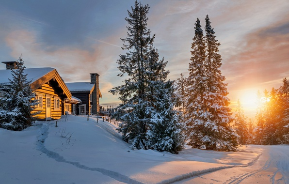 Картинка холод, зима, лес, солнце, свет, снег, домики, север