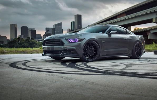 Фото обои Mustang, Ford, Road, Wheels, Niche