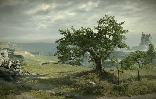 Картинка дерево, скалы, вид, Shadow of the Colossus, В тени колосса, панормама