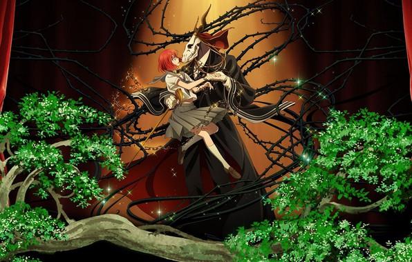 Картинка шипы, двое, Mahou Tsukai no Yome, Невеста чародея
