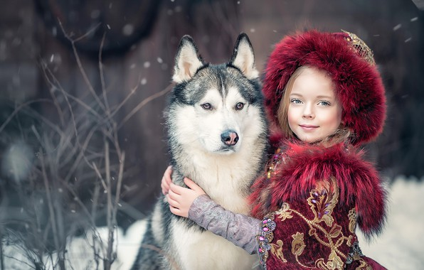Картинка собака, дружба, девочка, друзья, хаски, Ярослава Громова, Княжна