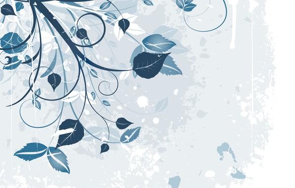 Картинка цветы, фон, вектор, текстура, background, floral, Decorative