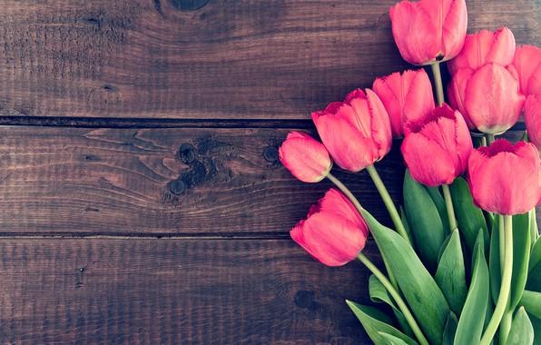 Картинка цветы, букет, тюльпаны, wood, pink, romantic, tulips, spring, розовые тюльпаны