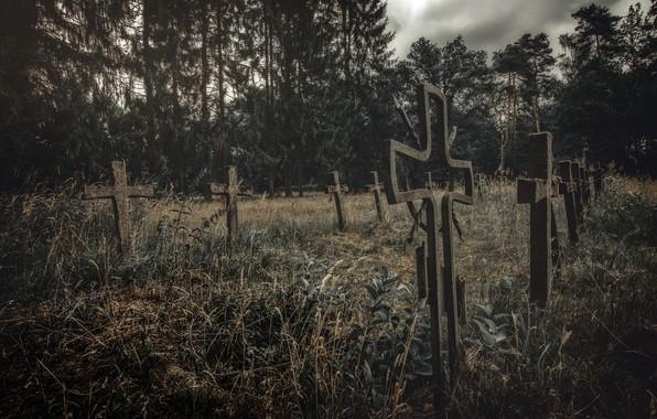 Картинка ночь, кресты, кладбище