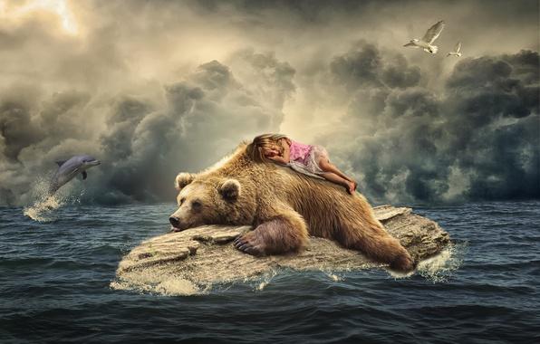 Картинка море, птицы, дельфин, чайки, сон, ситуация, медведь, девочка, бревно, спящая девочка