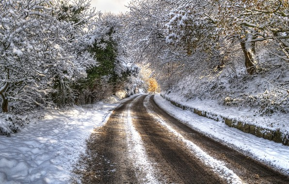 Фото обои HDR, trees, снег, зима, дорога, деревья, winter