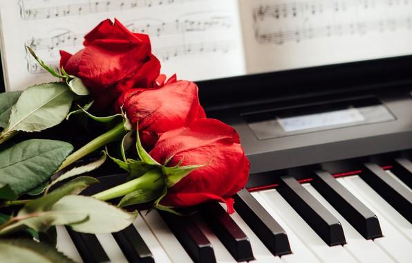 Картинка ноты, розы, клавиши, красные, три, пианино
