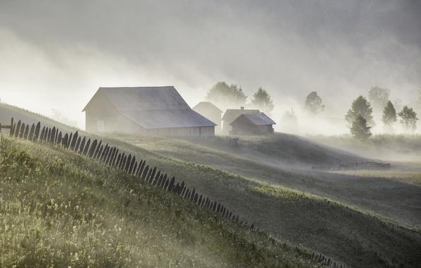Картинка лето, туман, дома, утро