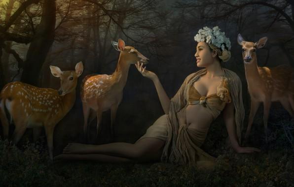 Картинка лес, животные, купальник, девушка, цветы, ветки, природа, поза, туман, парк, настроение, милая, ноги, поляна, модель, ...