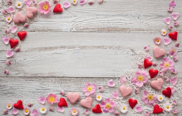 Картинка цветы, фон, ромашки, лепестки, сердечки, розовые, декор, марципан