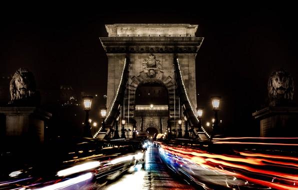 Картинка ночь, огни, лев, опора, Венгрия, Будапешт, Цепной мост