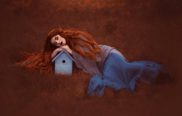 Содержание 1 рыжие волосы по соннику 2 воздействие сна про рыжие волосы на личную жизнь сновидца 3 приснились волосы во сне: рыжие волосы, запутанные или грязные, предвещают измену в любви или делах.