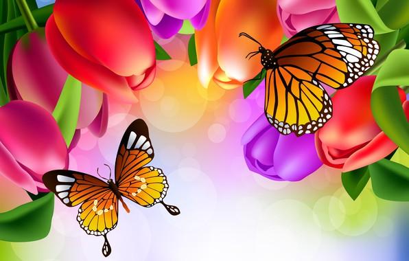 Картинка бабочки, цветы, рисунок, тюльпаны, яркость