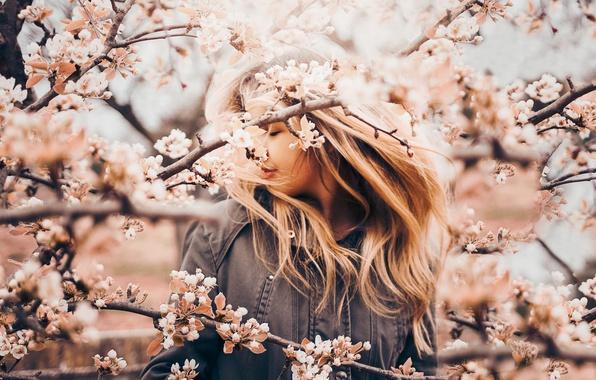 Картинка девушка, ветки, настроение, весна, яблоня, цветение
