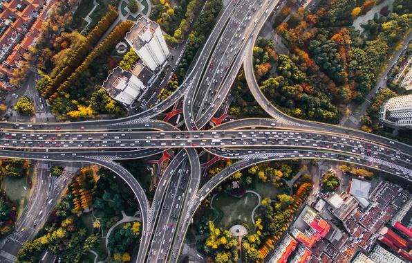 Картинка осень, машины, город, дороги, дома, вид сверху