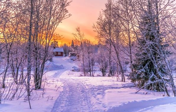 Картинка зима, лес, снег, закат, дом