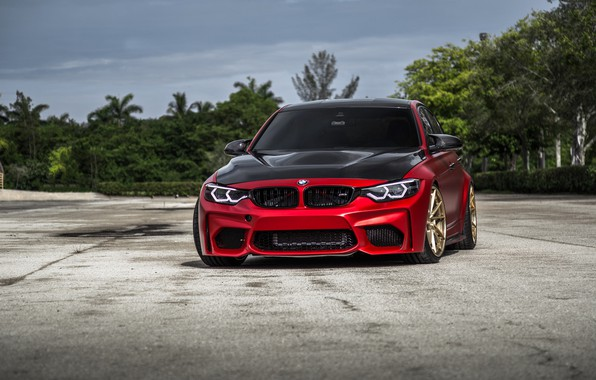 Картинка BMW, Carbon, RED, F80, Sight, LED, Evel