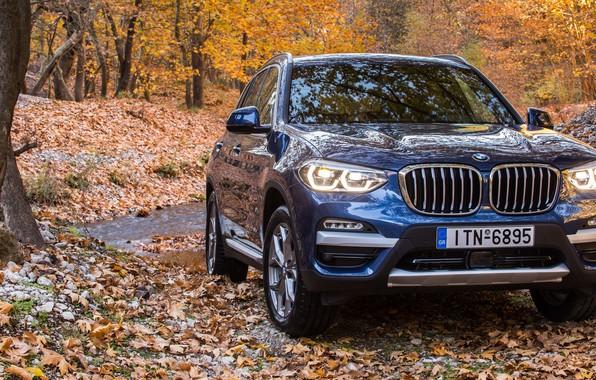 Картинка осень, внедорожник, 2017, xLine, BMW X3, xDrive20d