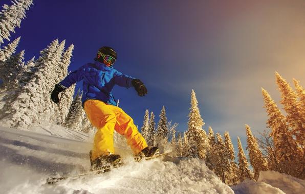 Картинка зима, солнце, снег, деревья, сноуборд, очки, куртка, перчатки, шлем, доска, экстрим, штаны, сноубордист