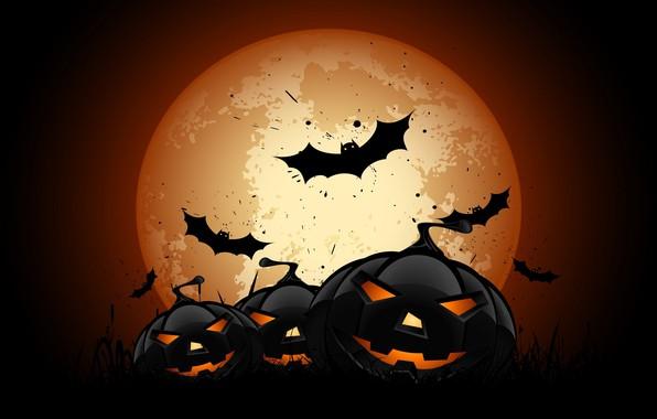 Картинка vector, Halloween, moon, night, bats, pumpkins, full moon, scary, spooky, vector art, holyday