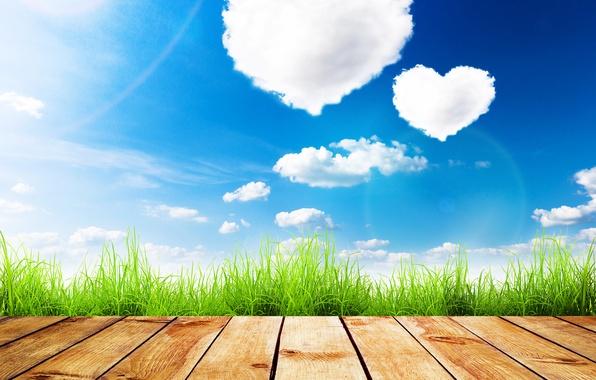 Картинка зелень, лето, небо, трава, солнце, облака, доски, сердечки, День святого Валентина