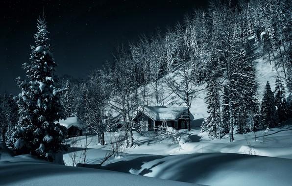 Картинка зима, лес, снег, деревья, деревня, сугробы, домики, Россия, Сибирь, Кузнецкий Алатау