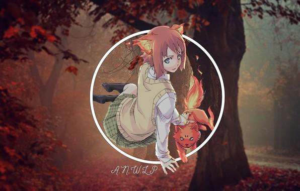 Картинка лес, кот, девушка, аниме, madskillz, огноль