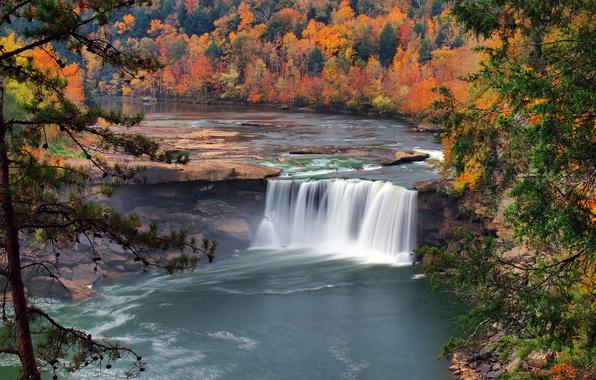 Картинка осень, лес, деревья, природа, река, водопад, США