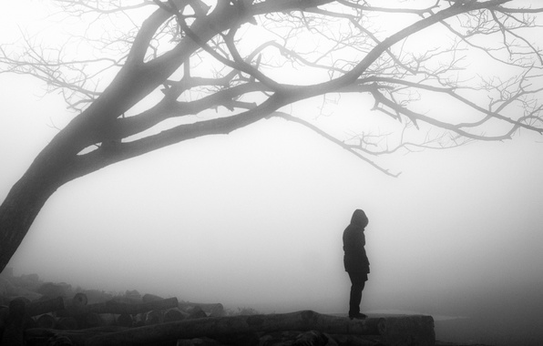 Картинка misty, tree, solitude, loneliness, branches, person, foggy, gloomy, desolation