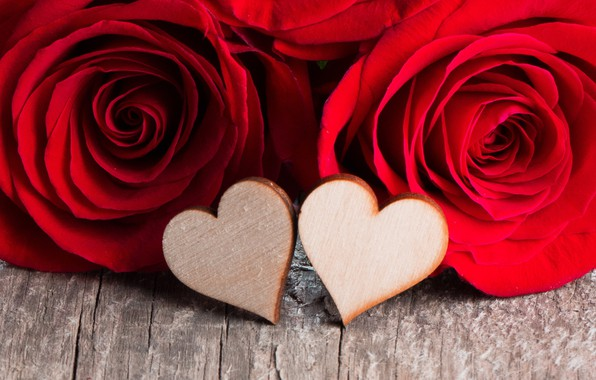 Картинка любовь, цветы, сердце, розы, лепестки, пара, red, love, heart, flowers, romantic, Valentine's Day, petals, roses