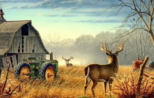 Картинка Nature, trees, animals, birds, fog, mood, deer, barn, farm, mist, fences