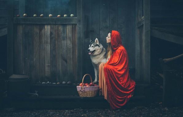 Картинка девушка, настроение, корзина, яблоки, собака, капюшон, плащ, Grant Lampard
